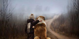 Çocuk edebiyatında hayvanlara yaklaşım