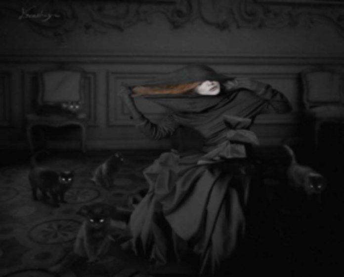 İnsanın Karanlık Yanı Üzerine Bir Kedi Bir Adam İki Kadın